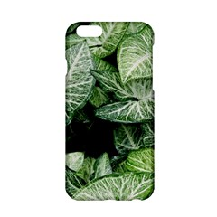 Green Leaves Nature Pattern Plant Apple Iphone 6/6s Hardshell Case