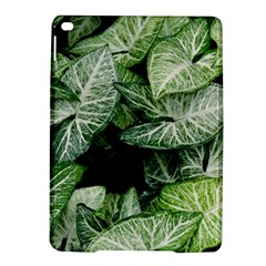 Green Leaves Nature Pattern Plant Ipad Air 2 Hardshell Cases