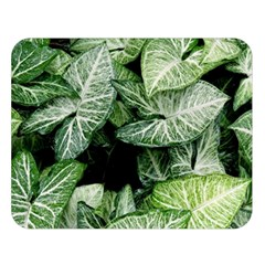Green Leaves Nature Pattern Plant Double Sided Flano Blanket (large)