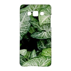 Green Leaves Nature Pattern Plant Samsung Galaxy A5 Hardshell Case