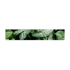 Green Leaves Nature Pattern Plant Flano Scarf (mini)