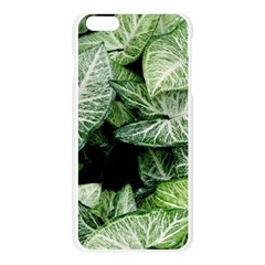 Green Leaves Nature Pattern Plant Apple Seamless iPhone 6 Plus/6S Plus Case (Transparent)