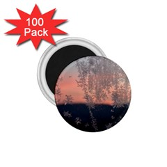 Hardest Frost Winter Cold Frozen 1 75  Magnets (100 Pack)