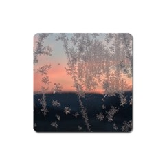Hardest Frost Winter Cold Frozen Square Magnet