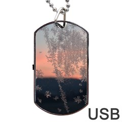 Hardest Frost Winter Cold Frozen Dog Tag Usb Flash (two Sides)