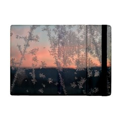 Hardest Frost Winter Cold Frozen iPad Mini 2 Flip Cases