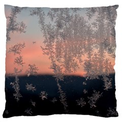 Hardest Frost Winter Cold Frozen Large Flano Cushion Case (two Sides)
