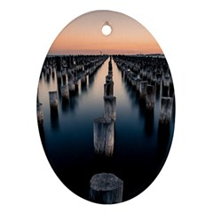 Logs Nature Pattern Pillars Shadow Oval Ornament (two Sides)