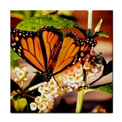 Monarch Butterfly Nature Orange Tile Coasters