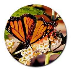 Monarch Butterfly Nature Orange Round Mousepads
