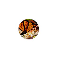 Monarch Butterfly Nature Orange 1  Mini Buttons