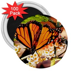 Monarch Butterfly Nature Orange 3  Magnets (100 Pack)