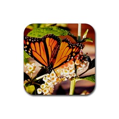 Monarch Butterfly Nature Orange Rubber Square Coaster (4 Pack)