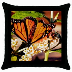 Monarch Butterfly Nature Orange Throw Pillow Case (black)