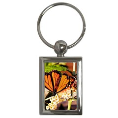 Monarch Butterfly Nature Orange Key Chains (rectangle)
