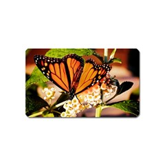 Monarch Butterfly Nature Orange Magnet (name Card)
