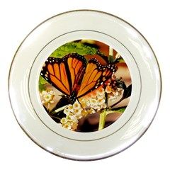 Monarch Butterfly Nature Orange Porcelain Plates