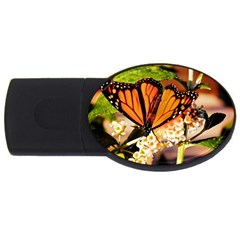 Monarch Butterfly Nature Orange Usb Flash Drive Oval (4 Gb)
