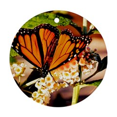 Monarch Butterfly Nature Orange Round Ornament (Two Sides)