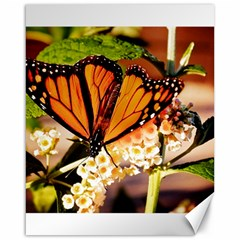 Monarch Butterfly Nature Orange Canvas 16  X 20