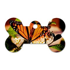 Monarch Butterfly Nature Orange Dog Tag Bone (two Sides)