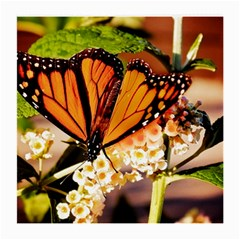 Monarch Butterfly Nature Orange Medium Glasses Cloth (2 Side)