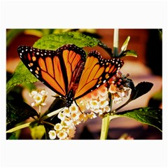 Monarch Butterfly Nature Orange Large Glasses Cloth (2 Side)