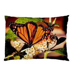 Monarch Butterfly Nature Orange Pillow Case