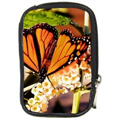 Monarch Butterfly Nature Orange Compact Camera Cases