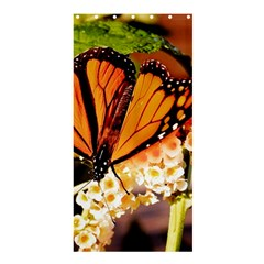 Monarch Butterfly Nature Orange Shower Curtain 36  X 72  (stall)