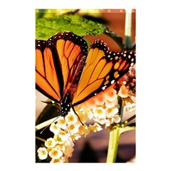 Monarch Butterfly Nature Orange Shower Curtain 48  X 72  (small)
