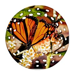Monarch Butterfly Nature Orange Round Filigree Ornament (two Sides)