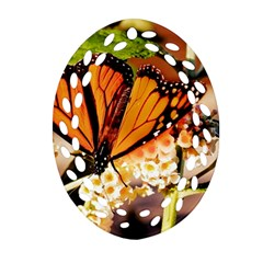 Monarch Butterfly Nature Orange Ornament (oval Filigree)