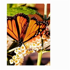 Monarch Butterfly Nature Orange Large Garden Flag (two Sides)