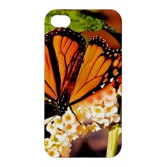 Monarch Butterfly Nature Orange Apple Iphone 4/4s Premium Hardshell Case