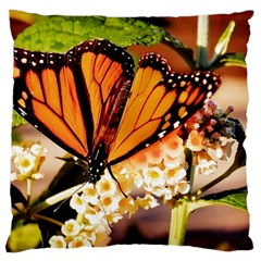 Monarch Butterfly Nature Orange Large Cushion Case (two Sides)