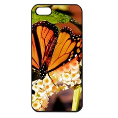 Monarch Butterfly Nature Orange Apple Iphone 5 Seamless Case (black)