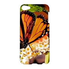 Monarch Butterfly Nature Orange Apple Ipod Touch 5 Hardshell Case
