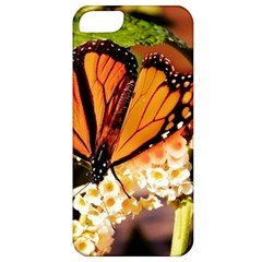 Monarch Butterfly Nature Orange Apple Iphone 5 Classic Hardshell Case