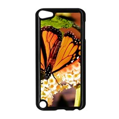 Monarch Butterfly Nature Orange Apple Ipod Touch 5 Case (black)
