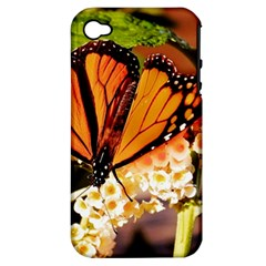 Monarch Butterfly Nature Orange Apple Iphone 4/4s Hardshell Case (pc+silicone)