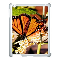 Monarch Butterfly Nature Orange Apple Ipad 3/4 Case (white)
