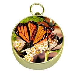 Monarch Butterfly Nature Orange Gold Compasses