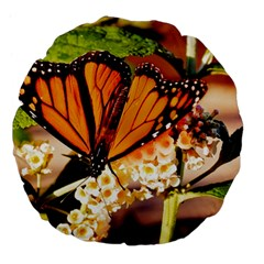 Monarch Butterfly Nature Orange Large 18  Premium Flano Round Cushions