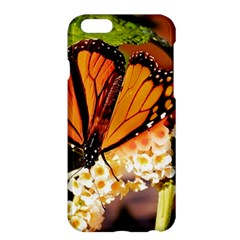 Monarch Butterfly Nature Orange Apple Iphone 6 Plus/6s Plus Hardshell Case