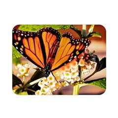 Monarch Butterfly Nature Orange Double Sided Flano Blanket (mini)