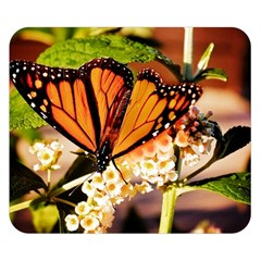 Monarch Butterfly Nature Orange Double Sided Flano Blanket (small)