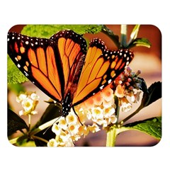 Monarch Butterfly Nature Orange Double Sided Flano Blanket (large)