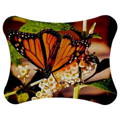Monarch Butterfly Nature Orange Jigsaw Puzzle Photo Stand (bow)