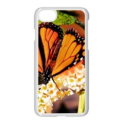 Monarch Butterfly Nature Orange Apple Iphone 7 Seamless Case (white)